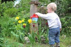 7 Gardening Science Projects to Try This Spring - ParentMap