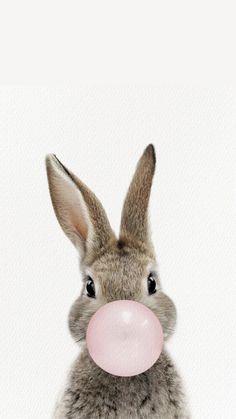Sassy Wallpaper, Rabbit Wallpaper, Bear Wallpaper, African Lovebirds, Lapin Art, Funny Minion Pictures, Bright Art, Bubble Art, Bunny Art