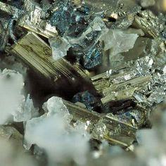 Sylvanite,  (Au,Ag)2Te4,  Emperor Mine, Viti Levu, Fiji. Sylvanite crystals in vugs of grey metallic ore