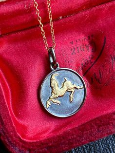 14k Solid Yellow Gold Cancer Zodiac Sign Medal Pendant for Necklace for Girls Teens Women and Men