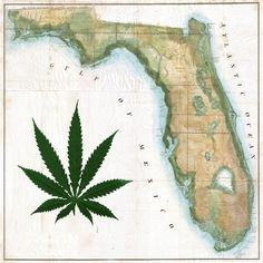$1 million medical marijuana research bill passes out of Florida committee