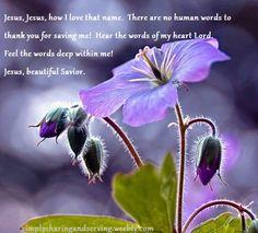 Gypsy Purple home. Purple Flowers, Beautiful Flowers, Simply Beautiful, Beautiful Pictures, Art Beauté, Dame Nature, Vides, Purple Home, All Things Purple