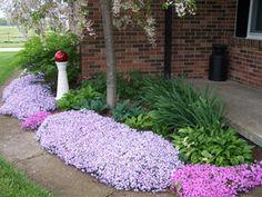 Creeping Phlox - front yard landscaping ideas for full sun Full Sun Perennials, Best Perennials, Flowers Perennials, Ground Cover Plants, Outdoor Plants, Garden Plants, Outdoor Flowers, Outdoor Spaces, Gardens