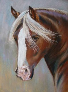 portrait of Welsh pony by eline van waardenburg Pretty Horses, Beautiful Horses, Cow Painting, Horse Paintings, Palomino, Horse Drawings, Horse Sculpture, Horse Pictures, Horse Art
