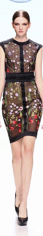 Michael Cinco fall 2016 couture Paris