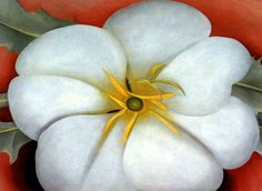 Flowers Galore - Georgia O'Keeffe - Art History - KinderArt Good opportunity to go out and take pictures of flowers and talk about the science of flowers as well as shapes and lines