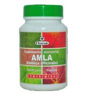 Amla  (Emblica officinalis)