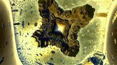 fractal music video