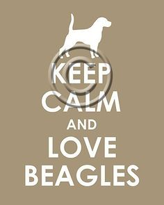 Keep Calm and Love Beagles archival print by TheLobsterPot on Etsy, $11.99