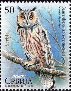 Stamp: Utina,Asio otus (Serbia) (Protected Animals,Birds, Owls) Mi:RS 720