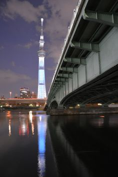 SkyTree during the night