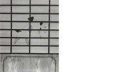 Miki Leal A SANGRE FRÍA Aguafuerte y punta seca 2007  39 x 32 cm .  He elegido esta obra porque me parece bastante curioso las herramientas utilizadas para llevarla a cabo.