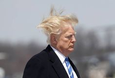 12 Photos Of Trump Boarding Air Force One On A Very Windy Day Donald Trump Hair, David Mack, Trump Taxes, Buzzfeed News, Windy Day, Air Force Ones, People, Photos, People Illustration