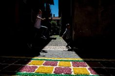 Infiorata | #pescasseroli (AQ), #abruzzo, #italy. 2014 #photography