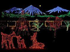 Fabulous Red Deer Bellevue Botanical Gardens Christmas Lights Outside Interior Design - GiesenDesign