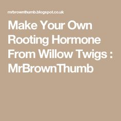 Make Your Own Rooting Hormone From Willow Twigs : MrBrownThumb