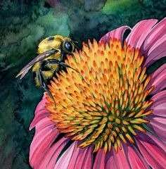 The bumble bee is getting nutrients from the pink rose, and the rose gets pollinated with the presence of the bee.