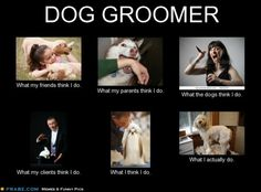 What people think I do, what I really do - Best memes filtered by Dog Groomer Dog Grooming Styles, Dog Grooming Shop, Dog Grooming Salons, Dog Grooming Business, Dog Grooming Supplies, Dog Supplies, Pet Shop, Creative Grooming, Dog Salon