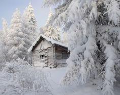 Love the snow...