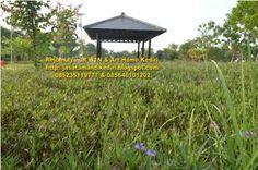 Jasa tukang buat taman di kediri,taman blitar,taman nganjuk,taman jombang,taman tulungagung.