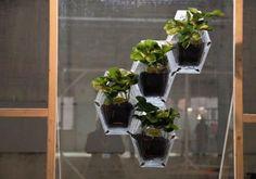 DIY garden tiered planter : DIY Window Agriculture Helps Urban Farming Grow Everywhere