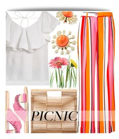 """Picnic in the Park"" by maranella ❤ liked on Polyvore featuring P.A.R.O.S.H., CECILIE Copenhagen, Lemlem, Cult Gaia, Trina Turk and picnic"