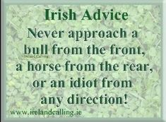 Irish Advice: Never approach a bull from the front, a horse from the rear, or an idiot from any direction! Great Quotes, Quotes To Live By, Me Quotes, Funny Quotes, Inspirational Quotes, Irish Quotes, Irish Sayings, Proverbs And Sayings, Scottish Sayings