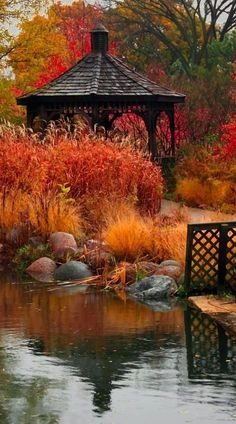 Cantigny Park pond and gazebo in Wheaton, Illinois Autumn Nature Gazebo, Pergola, Beautiful Places, Beautiful Pictures, Autumn Scenes, Seasons Of The Year, Fall Pictures, Beautiful Landscapes, Parks
