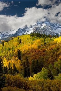 'An Autumn Color Pallet', The San Juan Mountain,Colorado; photo by   Peter B. Kunasz