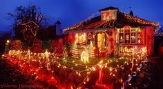 Interior, Christmas Tree Decorating Ideas With Multi Colored Lights In The Front Yard House: