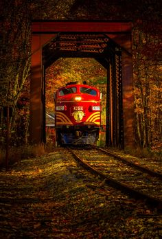 Train. ❣Julianne McPeters❣ no pin limits