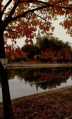 Timişoara Falling In Love, Autumn, Landscapes, Fall Season, Fall