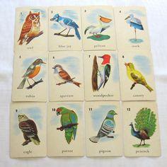Antique Bird Flash Cards .