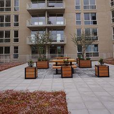 Het dakterras van appartementencomplex Kop van West is ingericht met Falco straatmeubilair. Er zijn stoelen, tafels en plantenbakken geleverd. Patio, Outdoor Decor, Home Decor, Homemade Home Decor, Yard, Terrace, Decoration Home, Interior Decorating