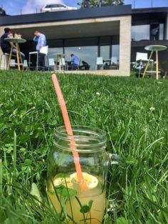 #lemonade #atra