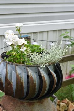 DIY vintage garden tub planters using galvanized buckets. Learn how to plant in galvanized buckets Garden Bulbs, Planting Bulbs, Garden Planters, Shade Garden, Bucket Gardening, Container Gardening, Flower Gardening, Galvanized Planters, Galvanized Decor