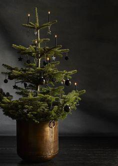 Joulutrendi 2016: mustat joulukoristeet | Meillä kotona Natural Christmas, Christmas Mood, Noel Christmas, Very Merry Christmas, Modern Christmas, All Things Christmas, Xmas, Christmas Ideas, Traditional Christmas Tree