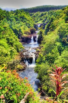 Umauma Falls, Big Island, Hawaii.