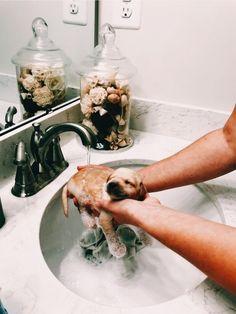 Much necessary. Lesbian mud bath dare
