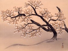 横山大観 《山桜》1934(昭和9)年 絹本・彩色山種美術館蔵