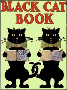 Black Cat Book by Jan Hunsche via Flickr