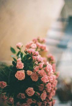 (3) Likes | Tumblr