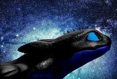 Tmnt, Night Fury, Toothless, How Train Your Dragon, Httyd, Thunder, Whale, Night Lights, Animals