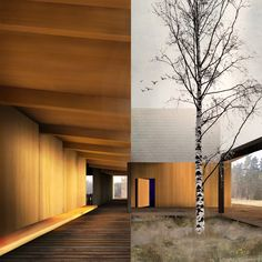 Great Kemeri Bog Visitor's Centre Competition (Latvia): an internal courtyard organises a series of rooms around a verandah Internal Courtyard, Commercial Design, Sydney Australia, Centre, Competition, Rooms, Architecture, Outdoor Decor, Modern