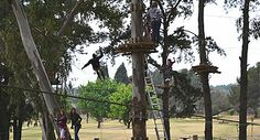 Acrobranch is located in the James and Ethel Grey Park (just around the corner from Melrose Arch), a Melrose Arch, Tree Tops, South Africa, Gazebo, Sailing, Places To Go, Trees, African, Outdoor Structures