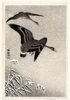 Artist: Ohara Koson Title: Geese in Snowstorm First edition Medium: Japanese Woodblock Print Size: x inches Signed & Sealed: Shoson Special Label: Watanabe 'D' cartouch Publisher: Watanabe Shozaburo Series: Crow, Crane, and Camelias Art Canard, Ohara Koson, Art Chinois, Falling Skies, Japan Painting, Art Asiatique, Art Japonais, Japanese Prints, Japan Art