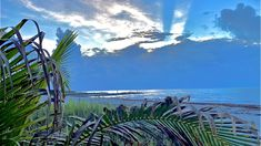 Boca Raton Beach, Sunrise Pictures, Us Beaches, South Florida, Modern Contemporary, Ocean, Sunset, Landscape, Building