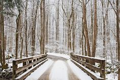 Lovely winter scene in the Greenbrier area of the Smoky Mountains.  William Britten Photography in Gatlinburg, TN williambritten.com Also, follow me on facebook: http://www.facebook.com/WilliamBrittenPhotography