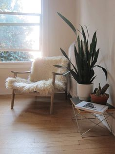corner with chair & plant