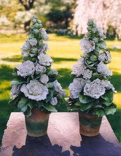Flores de porcelana de Clare Potter